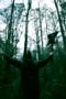 "NCS VIDEO PREMIERE: REBEL WIZARD — ""DRUNK ON THE WIZDOM OF UNICORN SEMEN"""